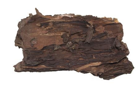 bark isolated on white background Stock Photo