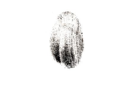 fingerprint isolated on white background Standard-Bild