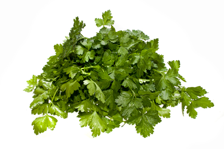 parsley isolated on white background Stok Fotoğraf