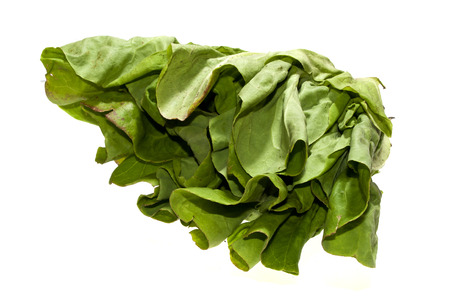 green salad isolated on white background Stock Photo