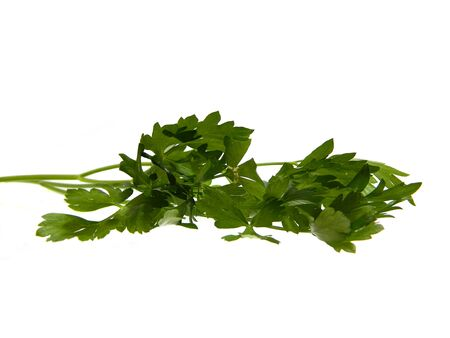 parsley isolated on white background 写真素材