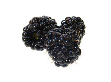 blackberry isolated on white background 写真素材