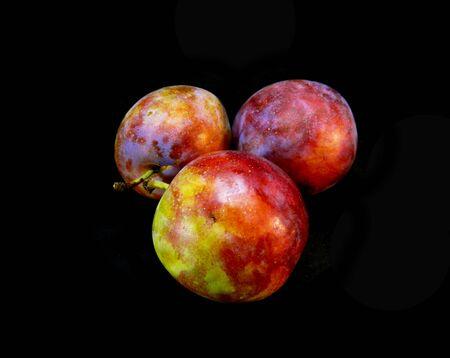 plum isolated on black background