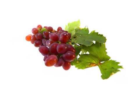 raisin isolé sur fond blanc