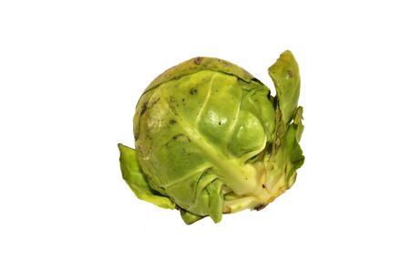 head of cabbage isolated on white background Imagens