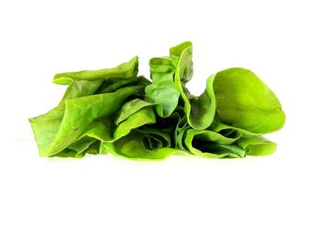 greens in salad isolated on white background Stock Photo