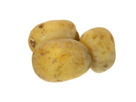 ripe potato isolated on white background 写真素材
