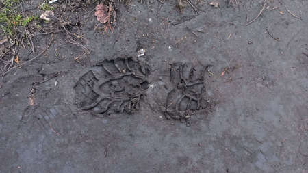 shoe prints on the ground close up Imagens