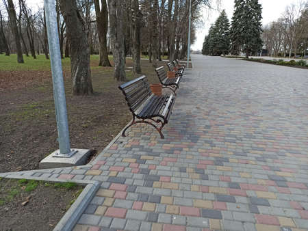 benches in the park - shot-close-up 版權商用圖片