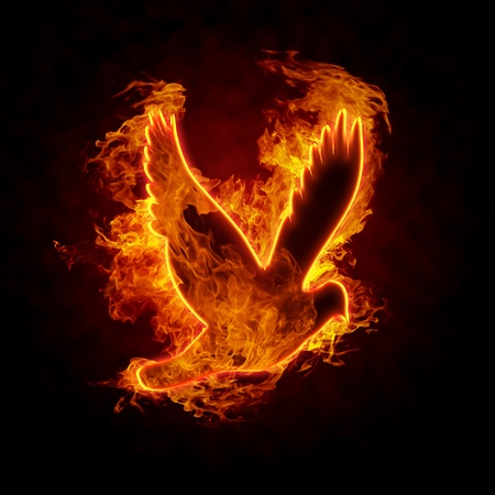 fire symbol: Burning bird silhouette on black background Stock Photo