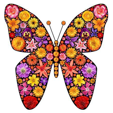 papillon rose: Silhouette de papillon à base de fleurs