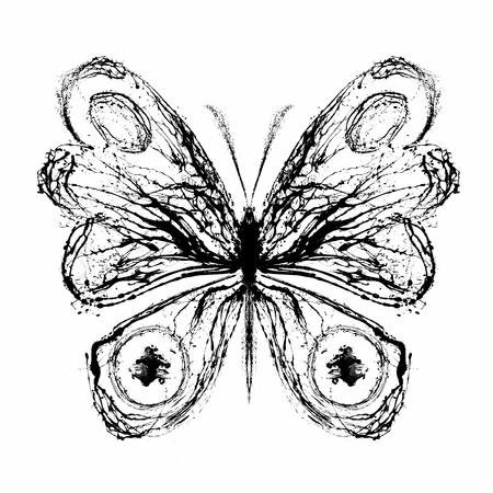 Abstract butterfly. Grunge splash draw paint Stock Photo - 12069470