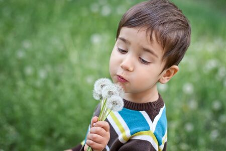 Kid blowing dandelion outdoor on green photo
