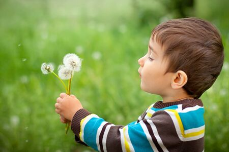 Kid blowing dandelion outdoor on green Stock Photo - 12083023