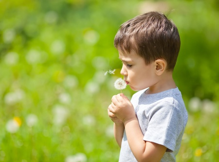 Little cute boy blowing dandelion on blurred dandelion field photo