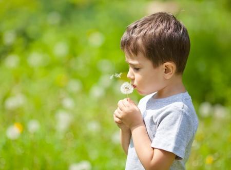 Little cute boy blowing dandelion on blurred dandelion field Stock Photo