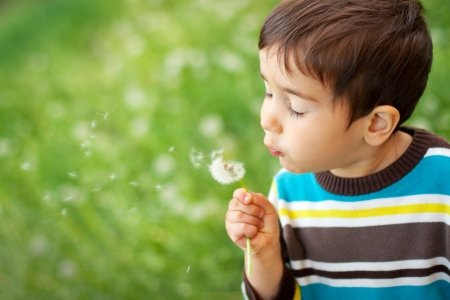 wishing: Kid blowing dandelion outdoor on green Stock Photo