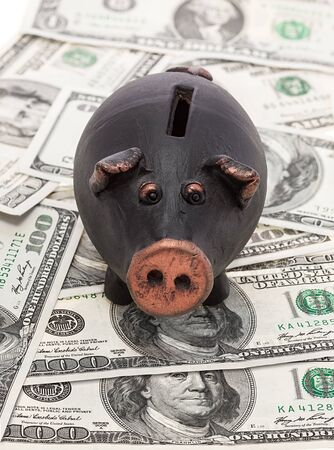 Money and black piggy bank photo