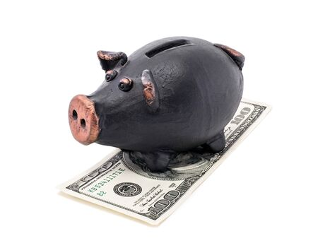 Money and black piggy bank isolated on white background. photo