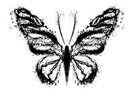 Abstract butterfly. Grunge splash draw paint Stock Photo - 17282777