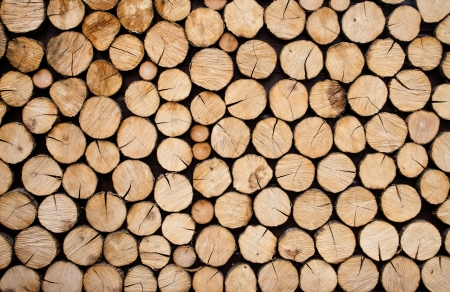 wood cut: Pile of wood logs ready for winter Stock Photo