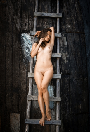 bare breast: Young naked woman standing on a wooden ladder Stock Photo