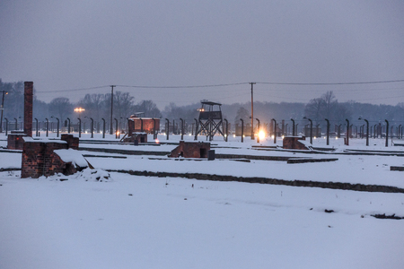 dedicated: AUSHWITZ (BIRKENAU), OSWIECIM; POLAND - Jan 27; 2015: ceremony dedicated to 70th anniversary of the liberation of Auschwitz-Birkenau concentration camp Editorial