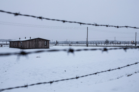 birkenau: AUSHWITZ (BIRKENAU), OSWIECIM; POLAND - Jan 27; 2015: ceremony dedicated to 70th anniversary of the liberation of Auschwitz-Birkenau concentration camp Editorial