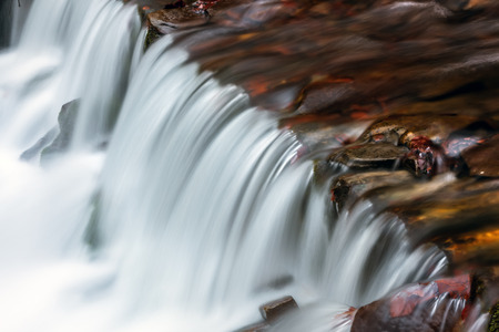forest stream: Waterfall and forest stream in the Carpathian mountains. Ukraine. Europe
