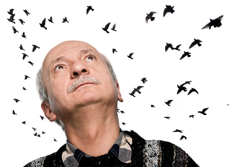 55 years old: mature man looking up on sky with flying birds