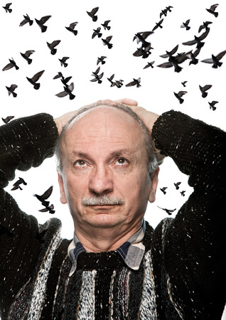 55 60: mature man looking up on sky with flying birds