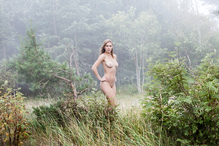 nude nature: Young beautiful naked girl in a misty forest in foggy day
