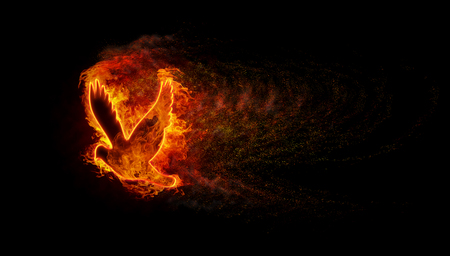 Silhouette of the bird with the flames of fire and explosion with lots of sparks