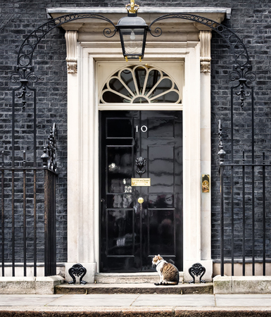 LONDON, UK - Apr 19, 2017: The cat named Larry is the 10 Downing Street cat and is Chief Mouser to the Cabinet Office. Larry is a brown and white tabby. 報道画像