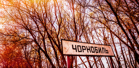 Trees on Chernobyl Exclusion Zone near Chernobyl nuclear power plant. Chernobyl sign. Text on sign: Chernobyl (city name). Stock Photo