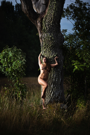 Healthy lifestyle and beauty concept. Naked girl outdoor. Young nude woman enjoying nature standing near old tree. Standard-Bild