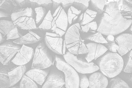 Dry chopped firewood logs ready for winter. Image in light gray tonality