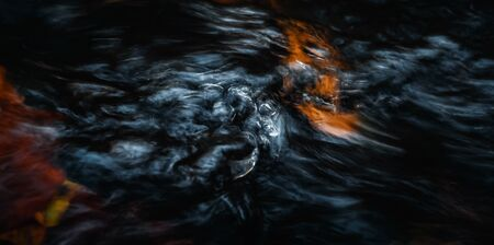Abstract nature background. Image of the water surface of a forest stream. Bubbles and flow of water