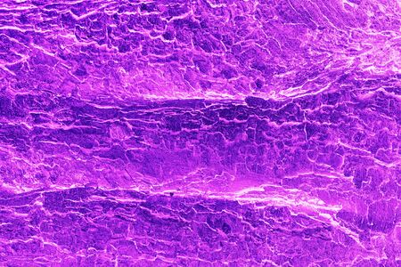 Abstract texture background. Old tree bark in trendy neon color