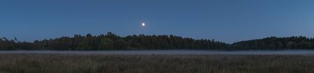Night view of the forest shrouded in fog with a full moon Stockfoto