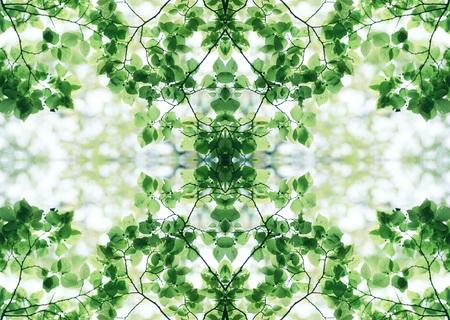 Green Texture Stock Photo - 121191129