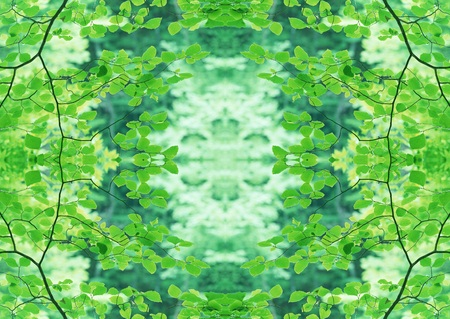 Green Texture Stock Photo - 121191133