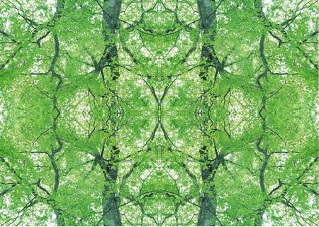 Green Texture Stock Photo - 121191117