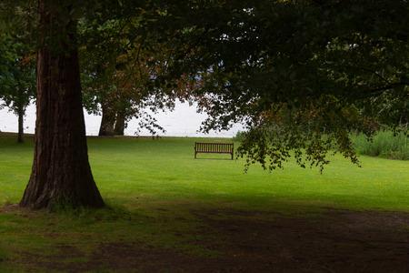 loch lomond: Scenic view of bench and lake via more tree branches in Loch Lomond, Scotland