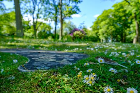 Low view-point shot  of daisies and footpath with daisy shapes at Leases Park in Necastle, United Kingdom