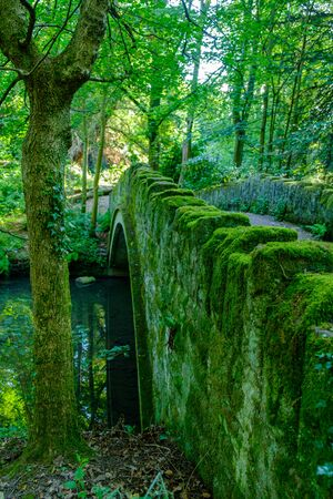 Romantic scene of an old stone bridge and water stream in Jesmond Dene park on a summer afternoon in Newcastle-upon-Tyne, UK Stock Photo