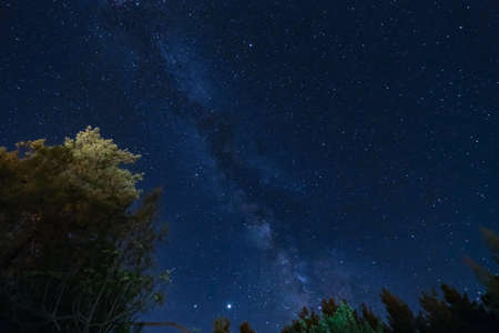 Milky Way over the Forest at the Troodos mountains. Photo taken over Kakopetria village in Cyprus Imagens