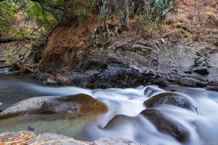 Pure water stream with smooth flow over rocky mountain terrain in the Kakopetria forest in Troodos, Cyprus. Slow exposure creating sooth flow impression. Imagens