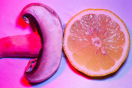 Macro capture of slices of a mushroom and a lemon, colorfully illuminated Stok Fotoğraf