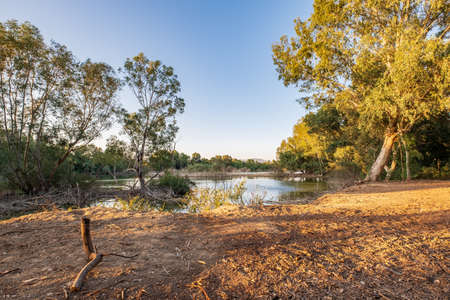 Athalassa Lake in Cyprus with beautifully lit water, and trees a beautiful sunny afternoon Reklamní fotografie